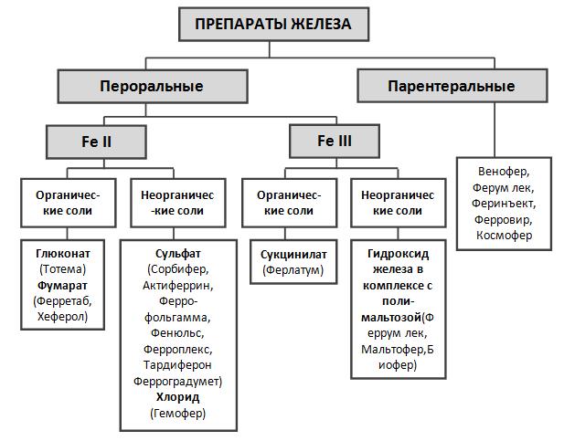 Диагностика при железодефицитной анемии